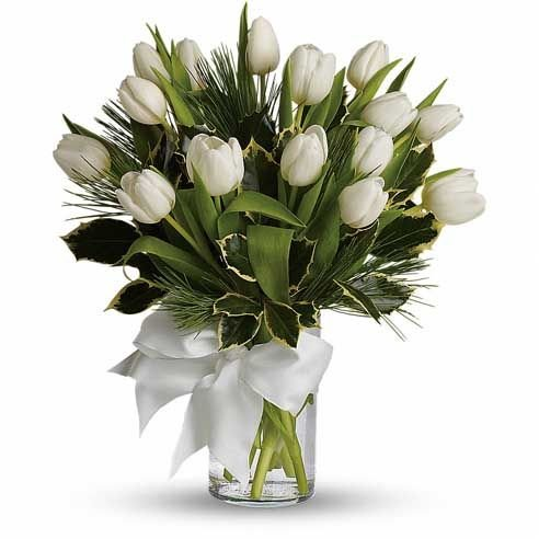 White Velvet - Flowers in Westcliff