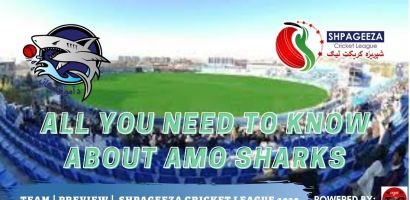 Shpageeza Cricket League All you need to know about Amo Sharks