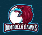 Dambulla Hawks Squad for Lanka Premier League 2020