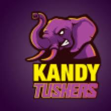 Kandy Tuskers Squad for Lanka Premier League 2020