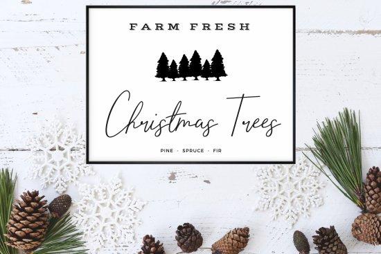 farm fresh christmas trees print home on the plains