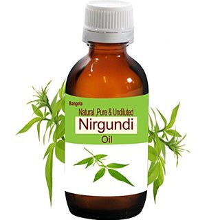 nirgundi-oil-vitex-negundo-anal-fistula-remedy