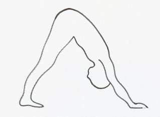 Downward Facing Dog Yoga Pose