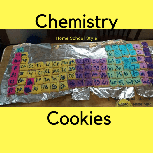 These Chemistry Cookies are frosted and decorated to look like the periodic table from chemistry class. This is some great home school creativity.