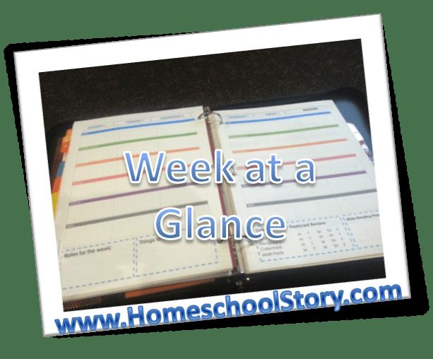 help challenge a student notebook homeschool story