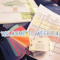 CC Cycle 2 Week 14 Lesson Plans