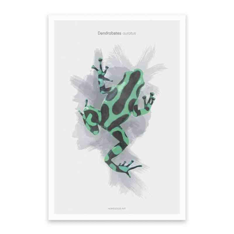 botanische poster groene kikker   www.homeseeds.nl