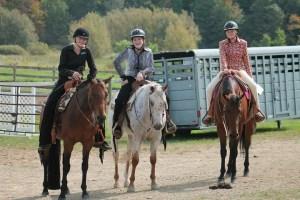 Heritage horse homestead