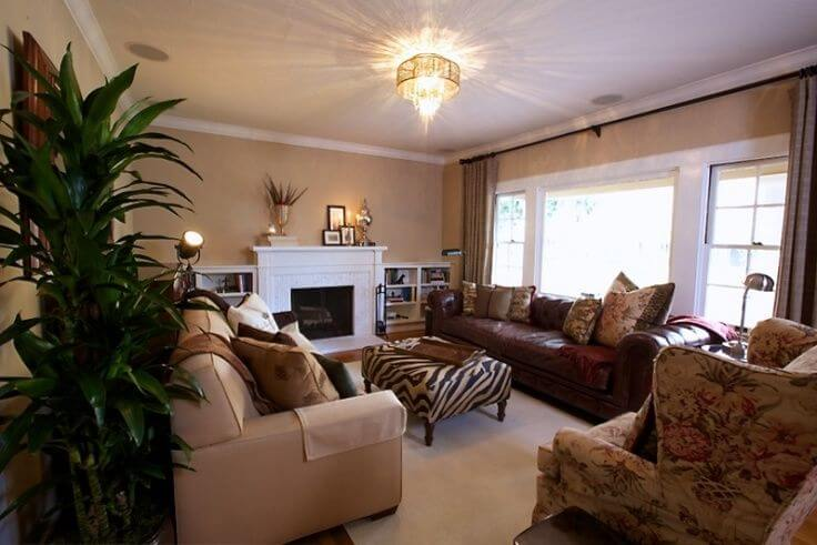 17 Zebra Living Room Decor Ideas Pictures Home Stratosphere