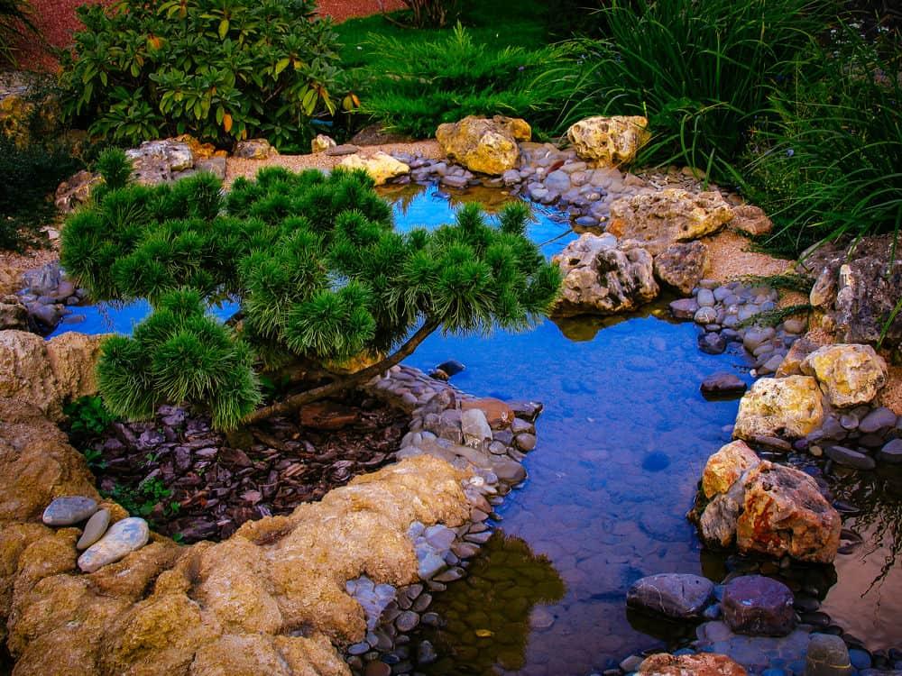 60 Backyard Pond Ideas (Photos) on Yard Ponds Ideas id=86936