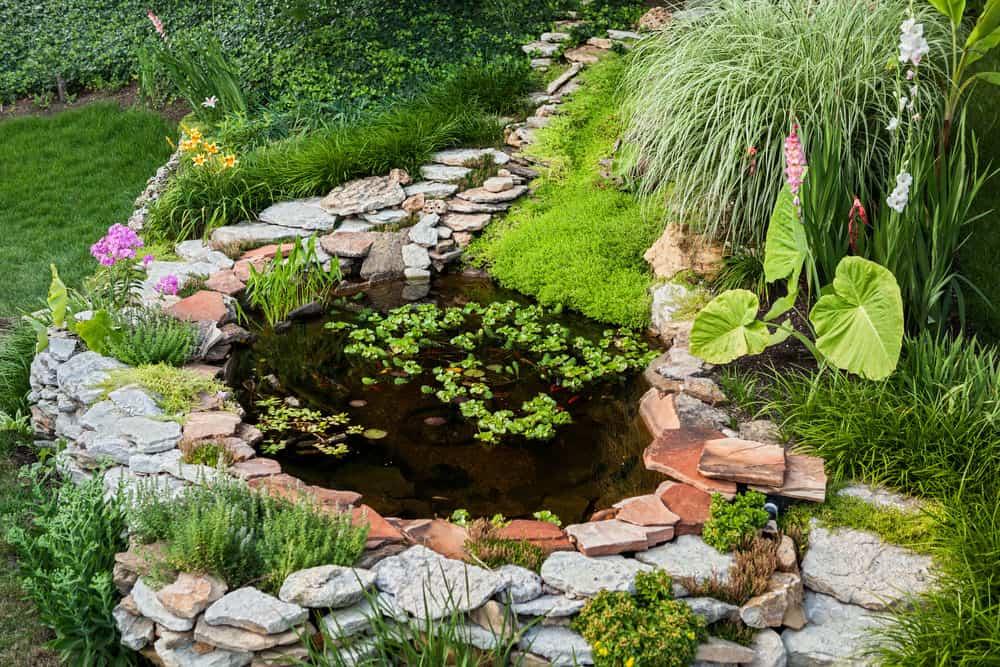 60 Backyard Pond Ideas (Photos) on Yard Ponds Ideas id=92222