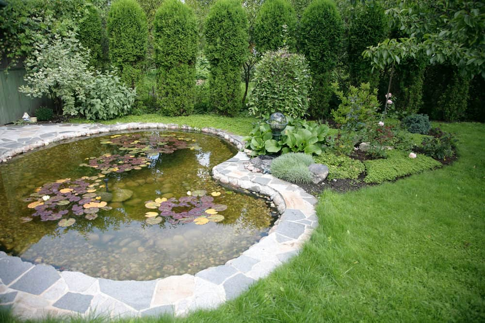 60 Backyard Pond Ideas (Photos) on Small Backyard Pond  id=73002