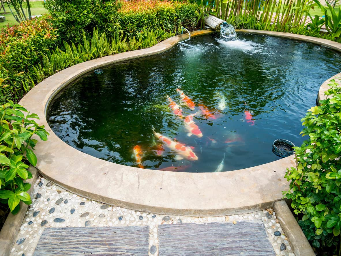 60 Backyard Pond Ideas (Photos) on Yard Ponds Ideas id=73132