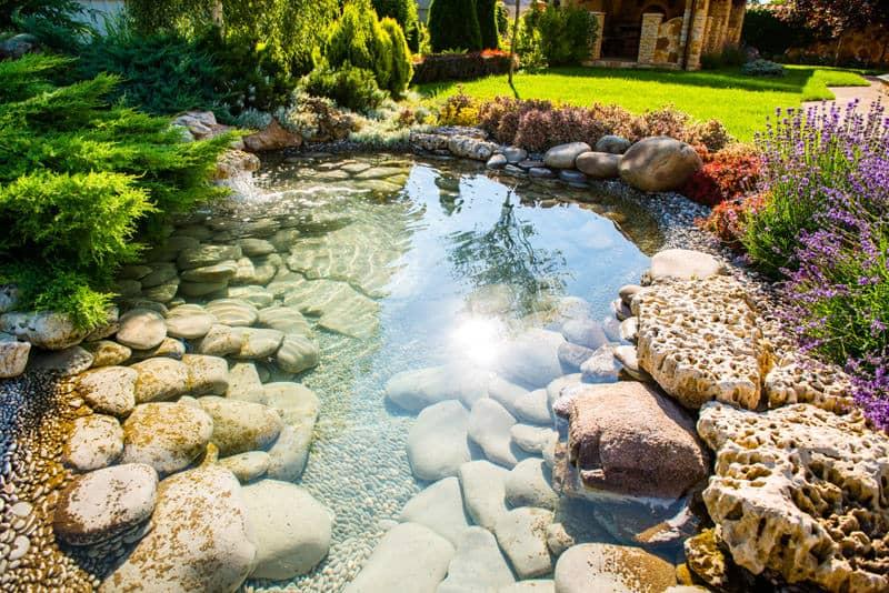60 Backyard Pond Ideas (Photos) on Yard Ponds Ideas id=66203