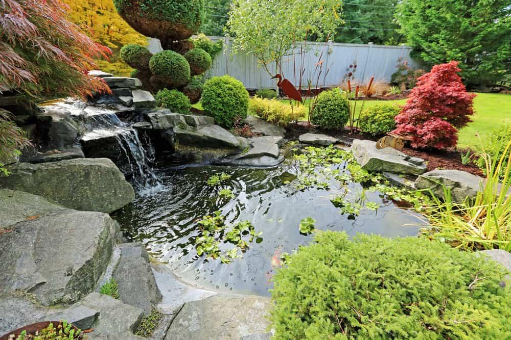 8 Different Types of Backyard Ponds on Pond Ideas Backyard id=99243