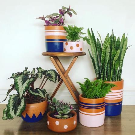 Os vasos criados pela ex-advogada.