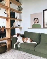 roomed-hond