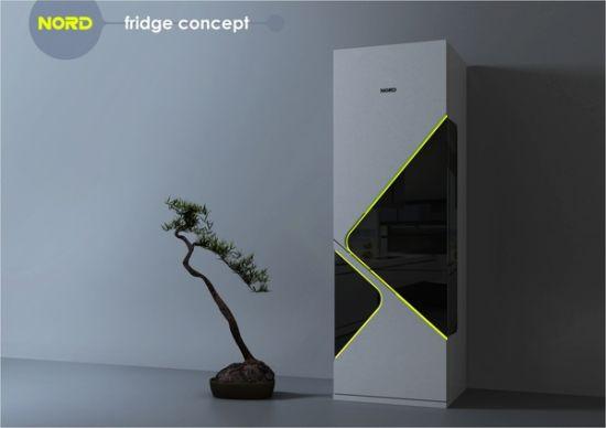 nord fridge concept
