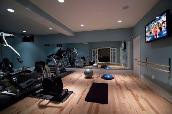 58e12a1f0e96ef53_8158-w660-h439-b0-p0--modern-home-gym
