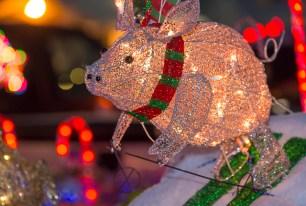 SF Santa Parade Dec 09 019