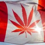 Mayor Pankow addresses the Canadian Senate regarding Bill C-45 respecting Cannabis