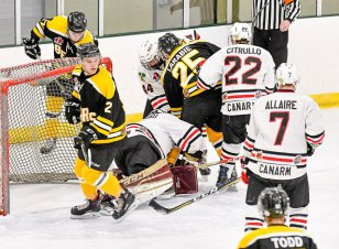 sf-bears-vs-brockville-braves-001