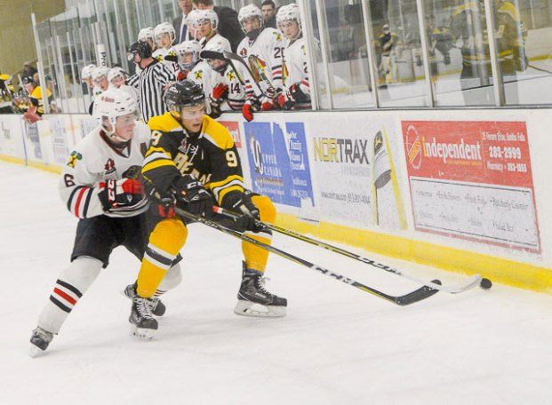 sf-bears-vs-brockville-braves-007