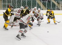 sf-bears-vs-brockville-braves-012