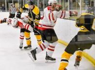 Bears_Hockey_Oct_05 057