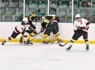 Bears_Hockey_Nov_16 097