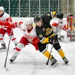 Bears hand the win to the Pembroke Lumber Kings on a silver platter