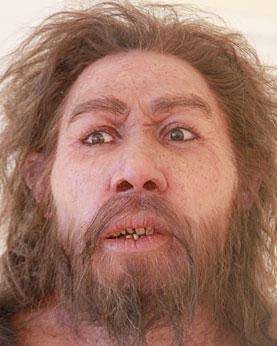 20% de l'ADN de Néandertal dans Homo sapiens