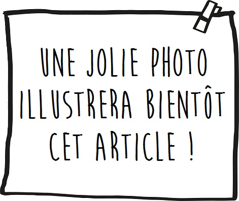 Les articles en papier à usage unique