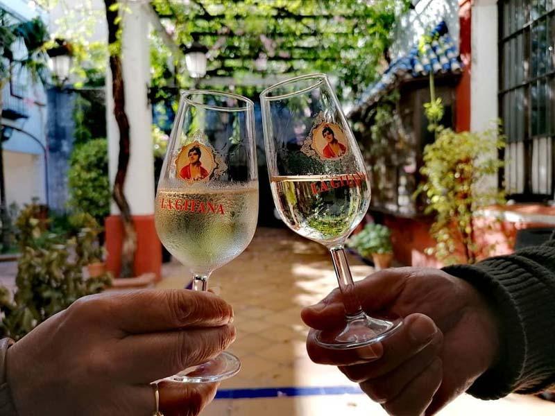 Vinos finos de manzanilla Sanlúcar de Barrameda