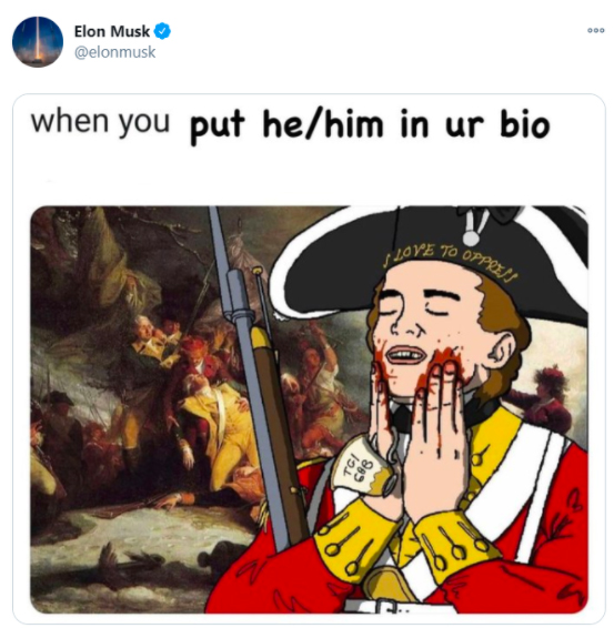 Elon Musk pronombres inclusivos twitter publicacion