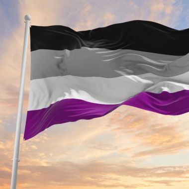 semana de la asexualidad ace week awareness octubre