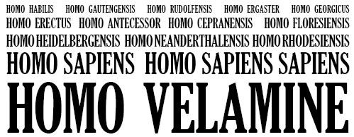 Homo Velamine
