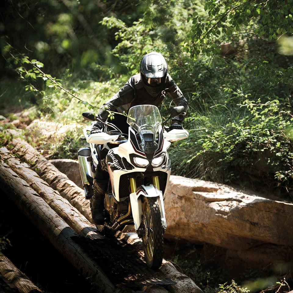 Jazda motocyklom po kmeňoch stromov