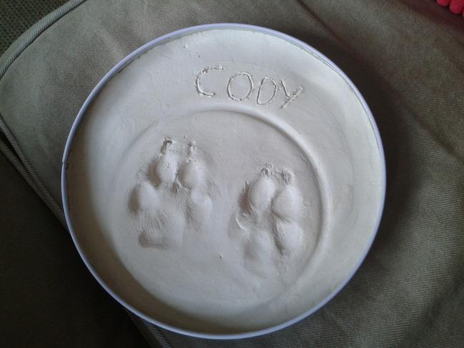 Afbeeldingsresultaten voor honden poot afdruk in klei