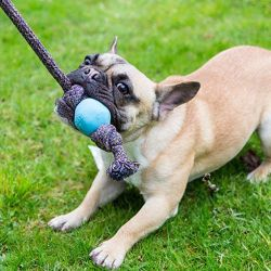 beco-beco-ball-with-rope (2)