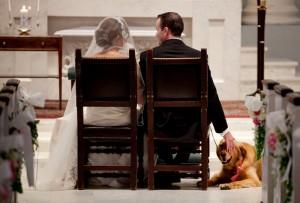 hond op huwelijksdag 300x203 Je hond bij je huwelijk