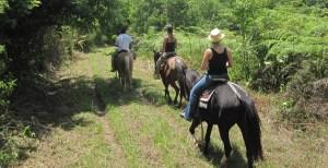 Horseback riding tours in La Ceiba