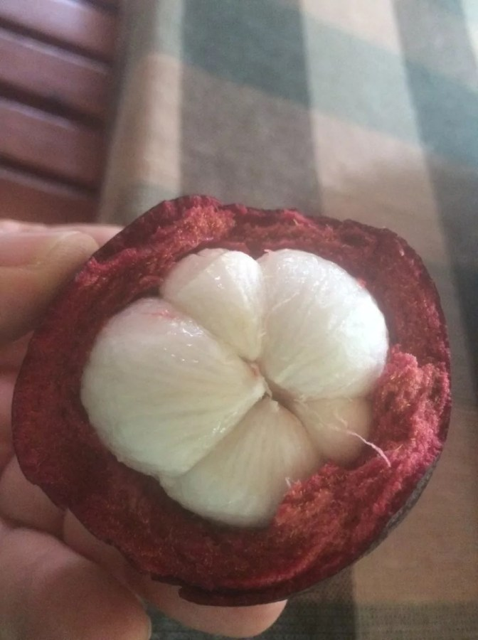 Exotic Tropical Fruits