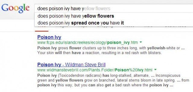 Google fills in my poison ivy search