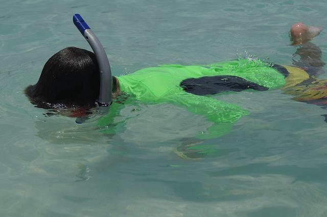 Mister Man snorkeling