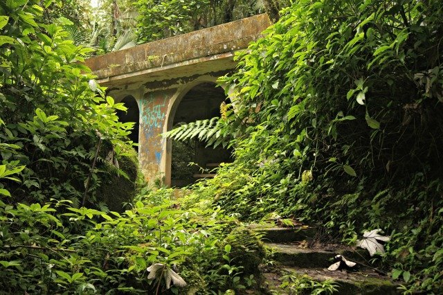 Abandoned picnic structure in El Yunque
