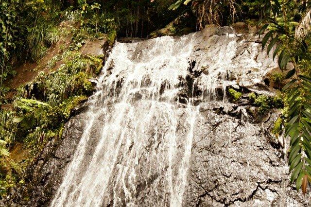Water falling in El Yunque