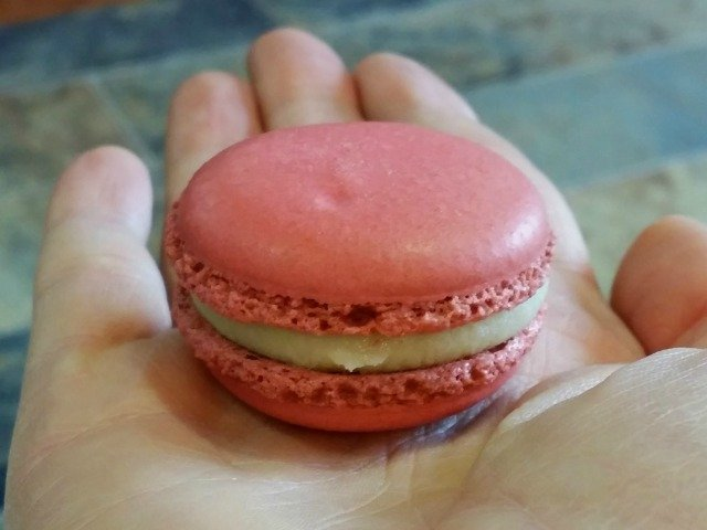 Pink macaroon in my hand