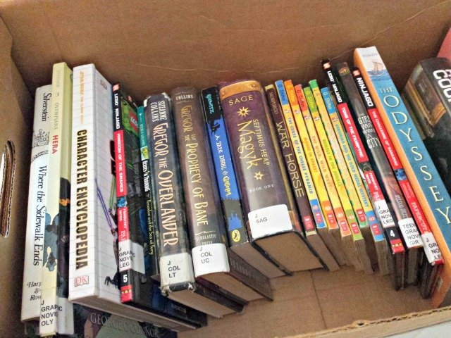 Bring a box of books on road trips to keep kids entertained