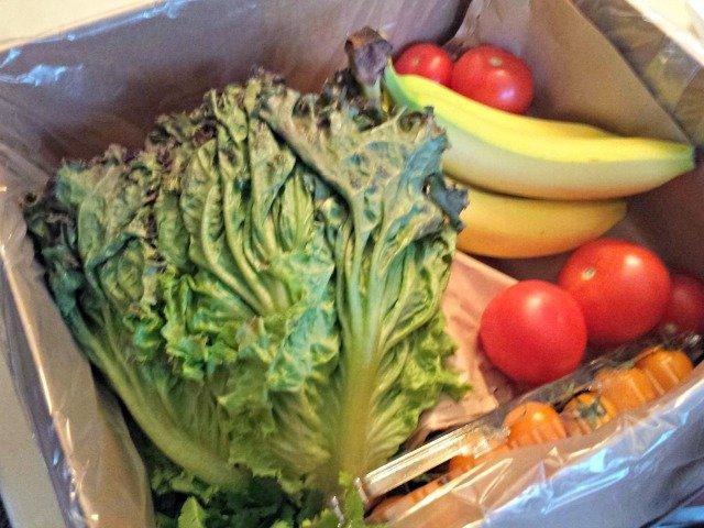 Packaging of Door to Door Organics fruit and veggies small box